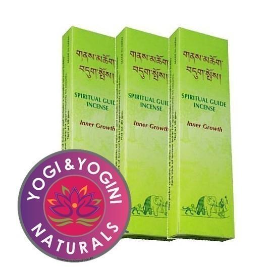 Spiritual Guide Inner Growth - NE0507